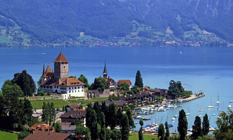 Швейцария.Женева.Выставка тюльпанов в Морже. 3