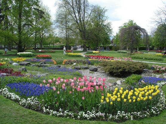 Швейцария.Женева.Выставка тюльпанов в Морже. 5