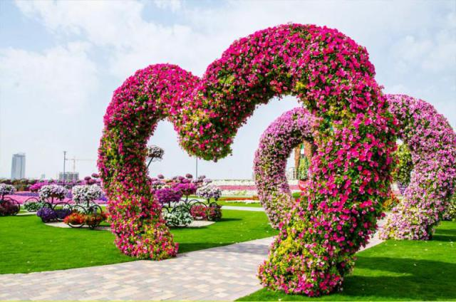 восхитительному «Саду чудес»3