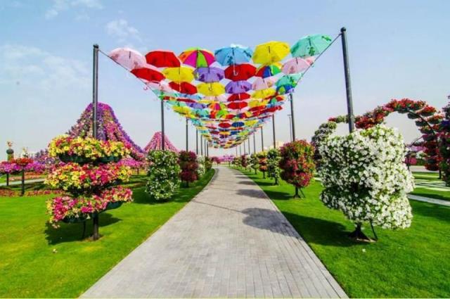 восхитительному «Саду чудес»8