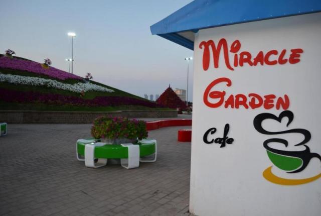 восхитительному «Саду чудес»9