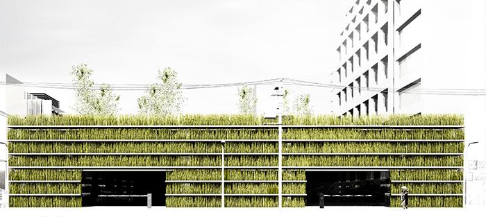 Сады Шинжуку в Токио