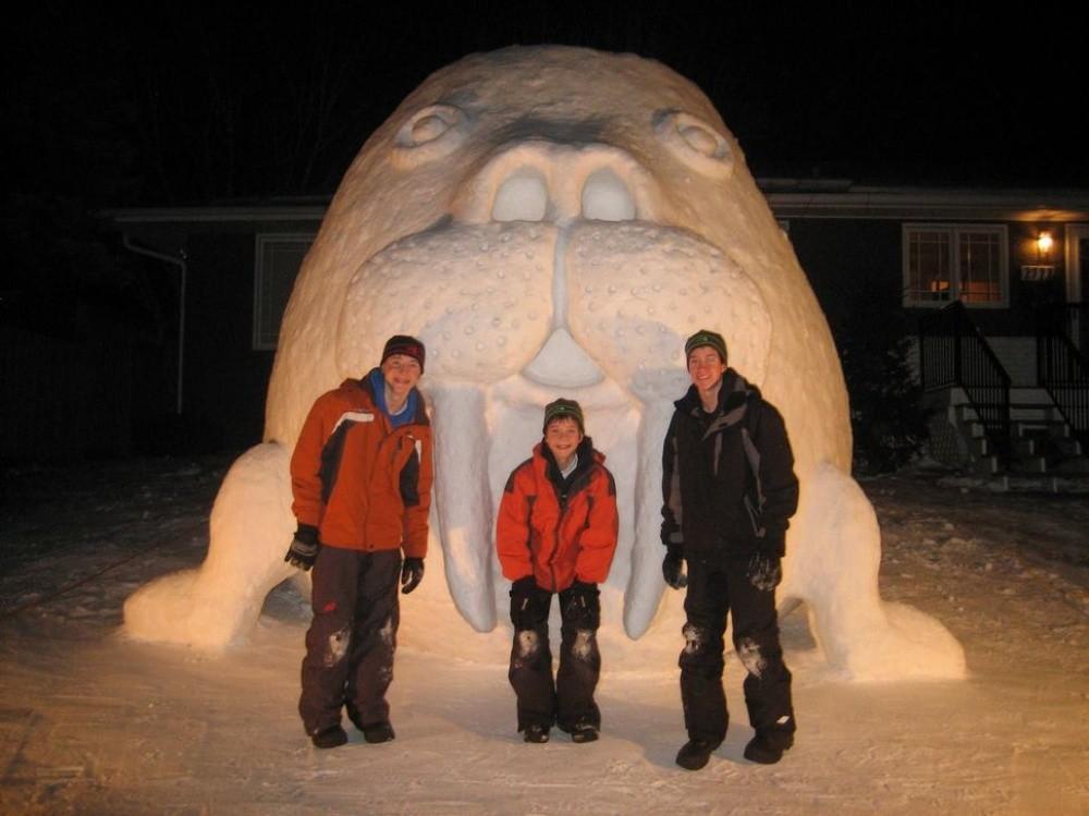 3. Несомненно, им приходится просить снега еще и у соседей.