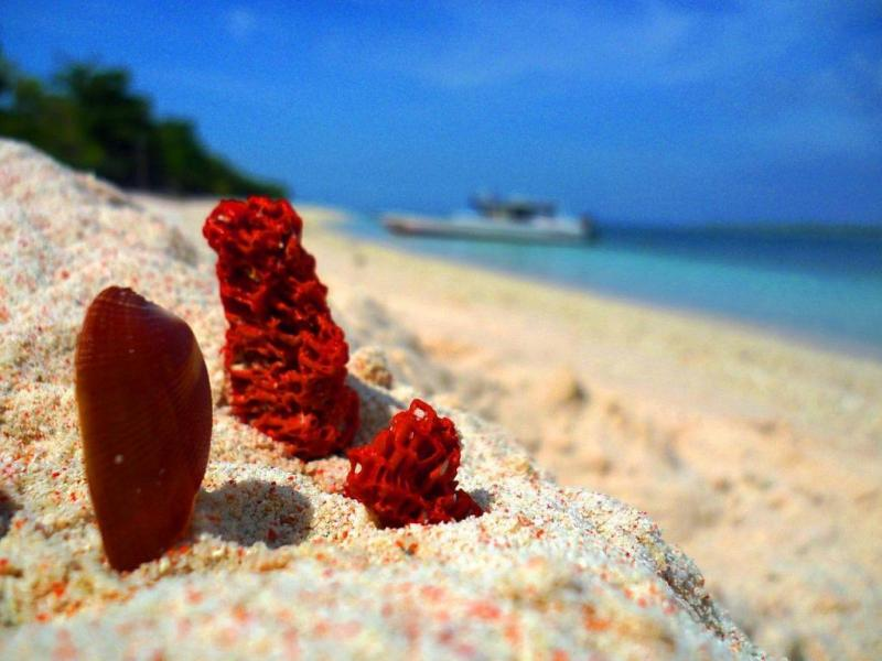 Остров Санта Круз, Филиппины
