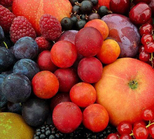 frukti dli pozvonocnika