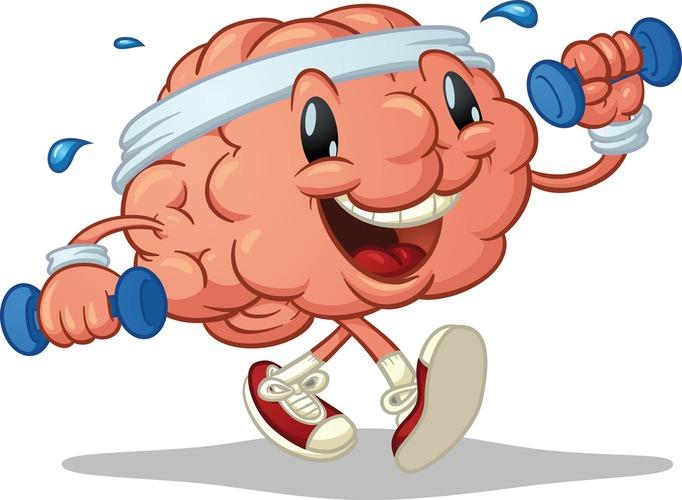 ociseaem sosudi golovnogo mozga